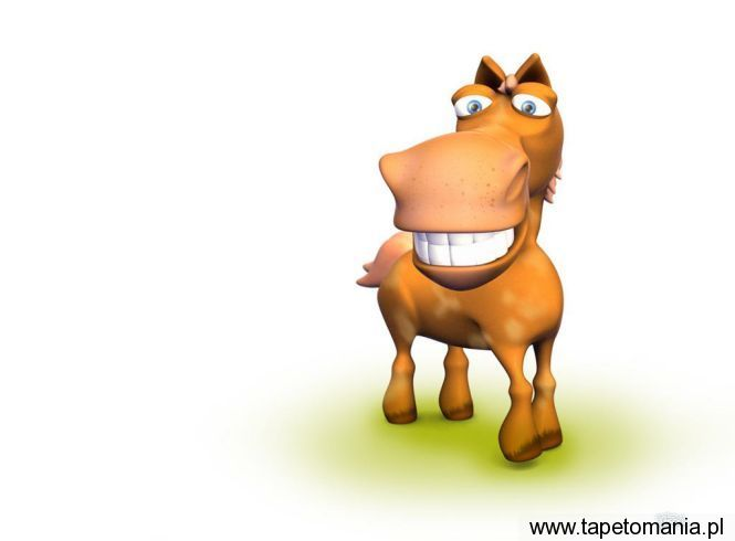 Funny 3D Animals Wallpapers 03, tapety Zwierz�ta, Zwierz�ta tapety na pulpit, Zwierz�ta