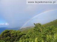rainbows 7
