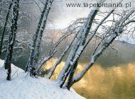 winter wall002