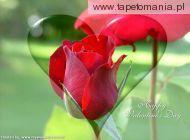 Walentynki 118