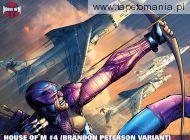 Hawkeye 4