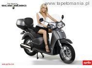 Aprilia 125 150 200 Scarabeo Scooter